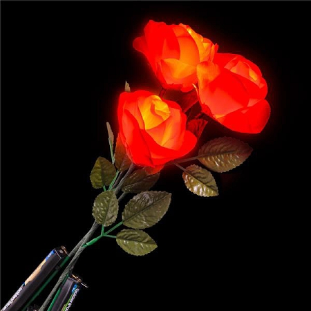 Red rose lights